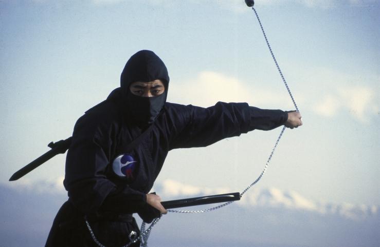Revenge-of-the-Ninja-001.jpg