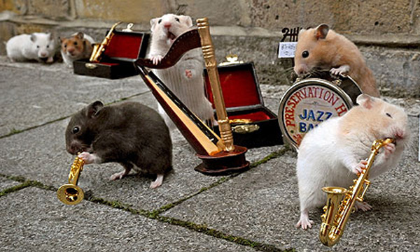 jazz_playing_hamsters_01